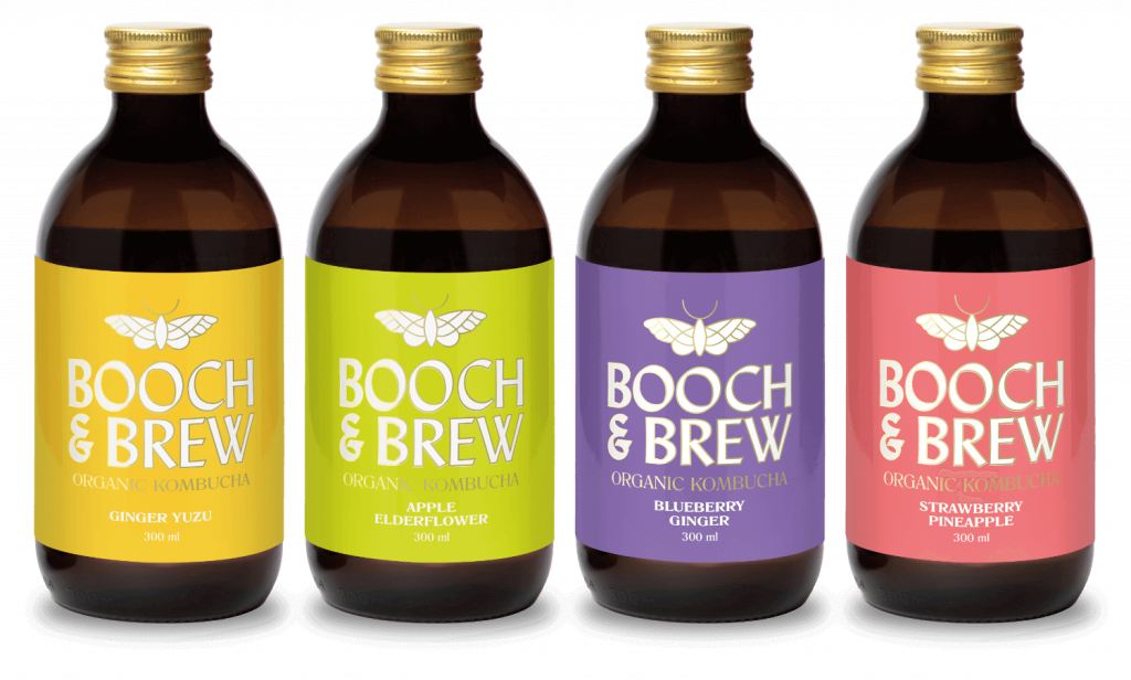 Photo of Booch & Brew's flavour assortment. From Left to Right: Ginger Yuzu, Apple Elderflower, Blueberry ginger, and strawberry pinapple
